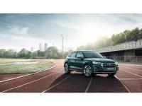 Audi SQ5 TFSInuevo Madrid