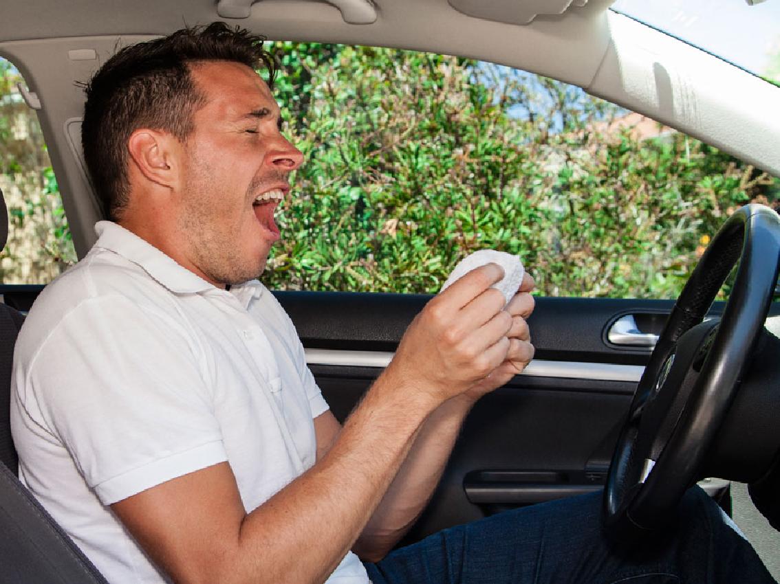 Consejos para los conductores que padezcan alergia