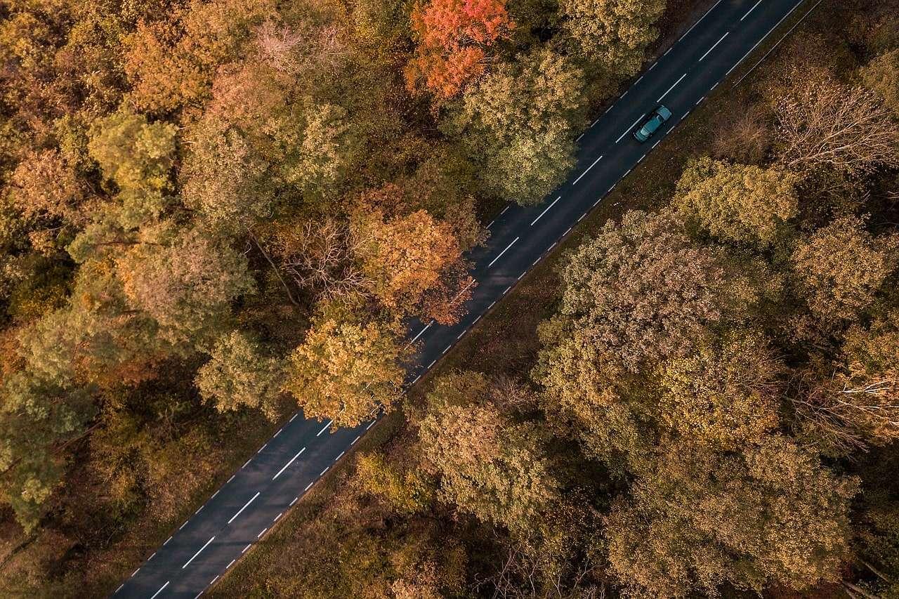 Consejos para conducir en otoño con total seguridad
