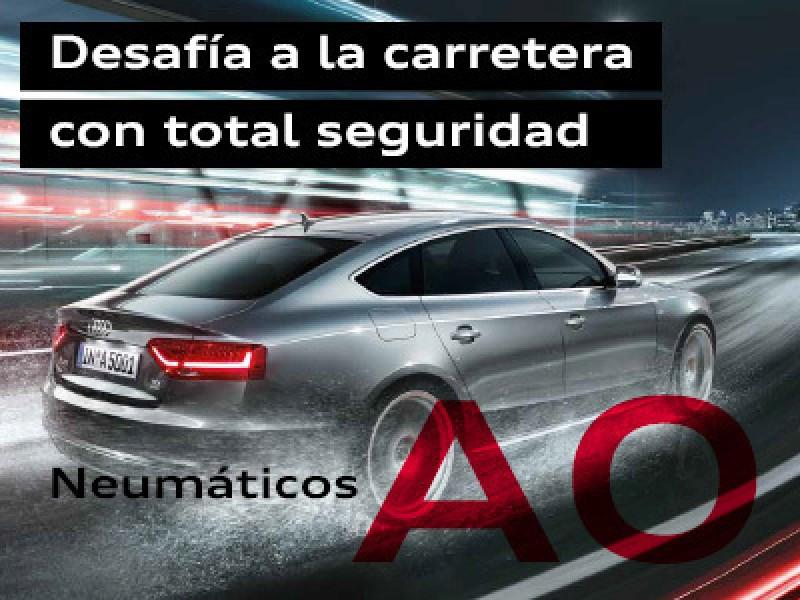 Neumáticos Audi