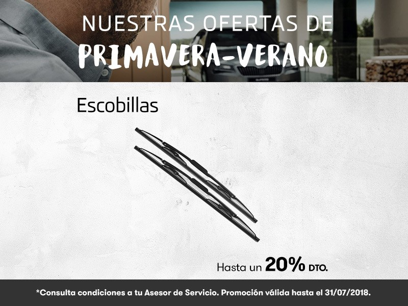 Oferta Primavera-Verano escobillas hasta un 20% dto.
