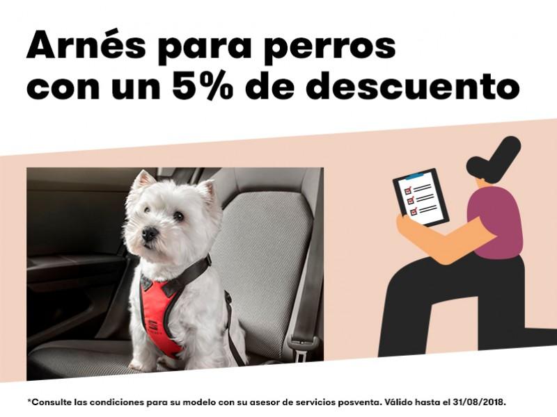 Arnés para perros con un 5% de descuento