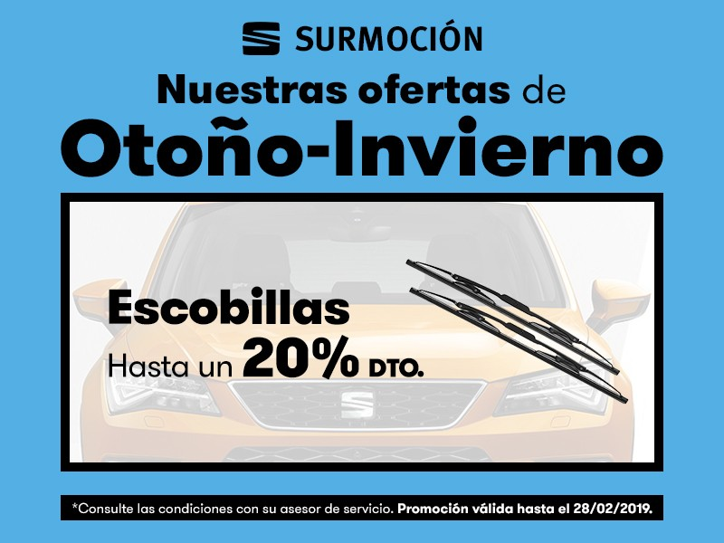 Escobillas hasta un 20% Dto*