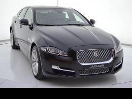 Coches segunda mano - Jaguar XJ 3.0 Diesel SWB Premium Luxury en Zaragoza