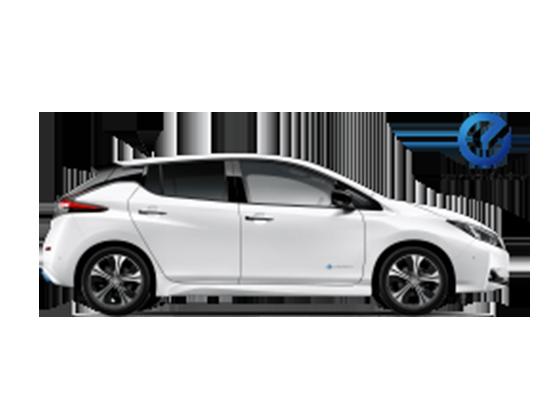 Nissan Leafnuevo