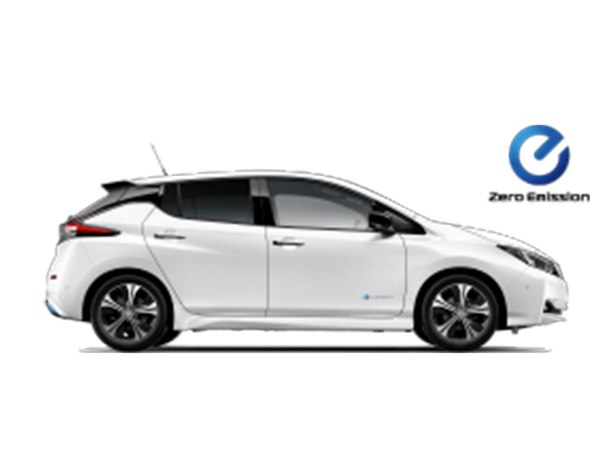 Nissan Novo Leafnuevo